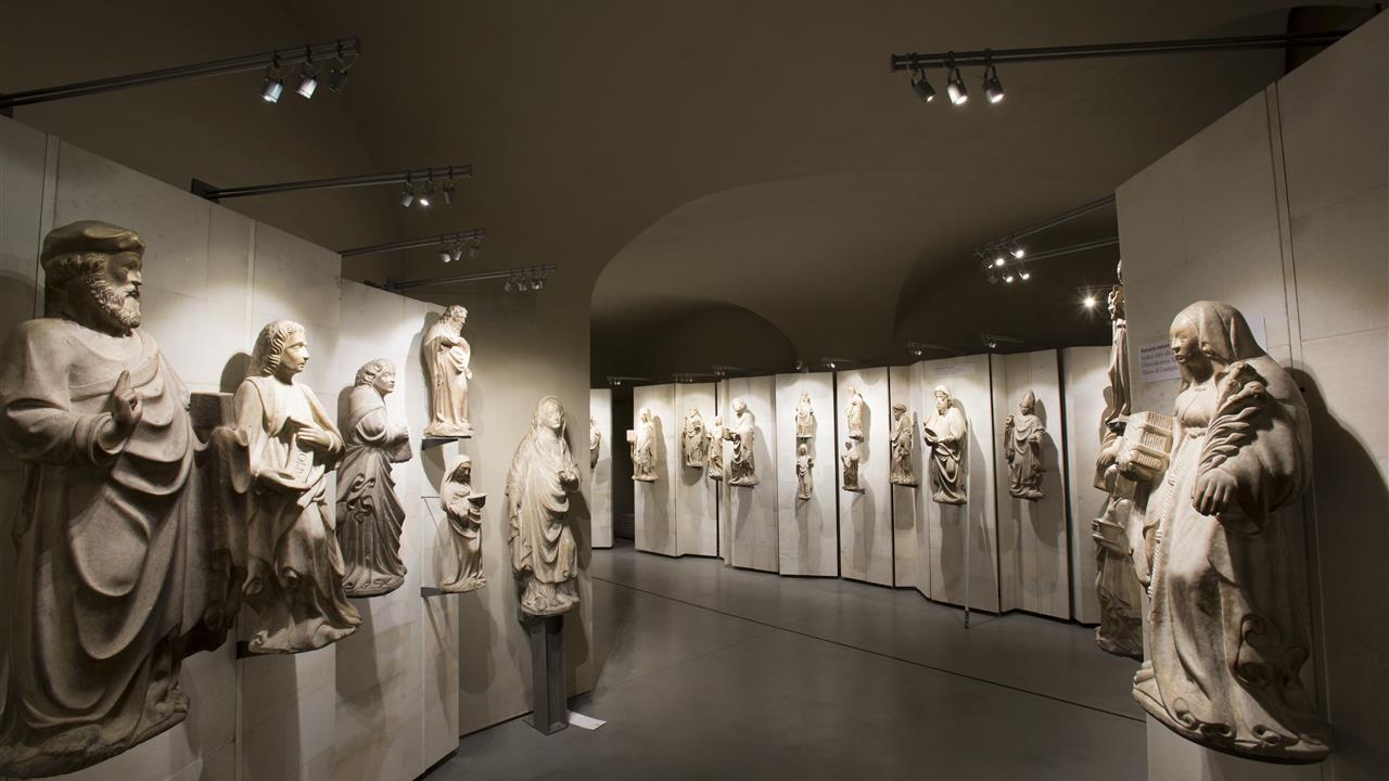 Museum Of Natural History Milan